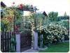 lato-2008-wejscie