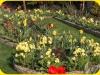 wczesna-wiosna-2006